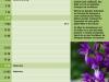 ith-prod-08-04-rgb-kl-01-6