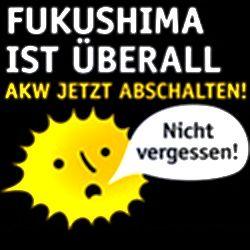 Fukushima-Mahngang am 11. März in Bad Pyrmont